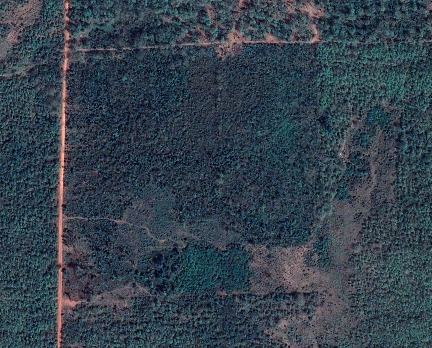 aerial view location plantation