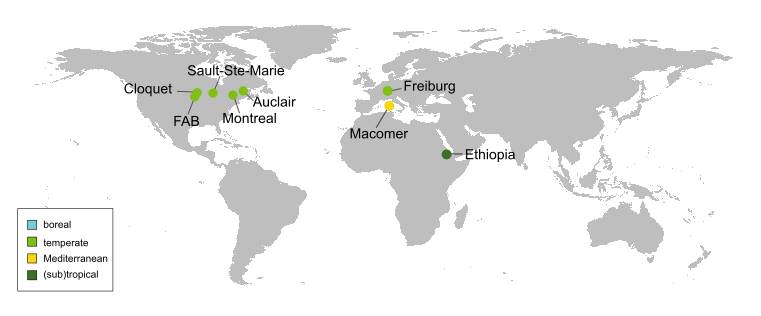 map with the seven sites of IDENT